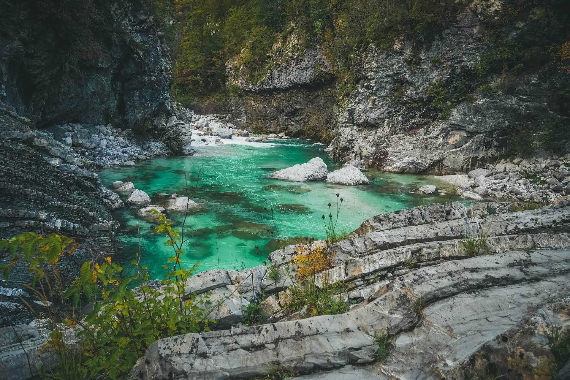 Soča river fly fishing